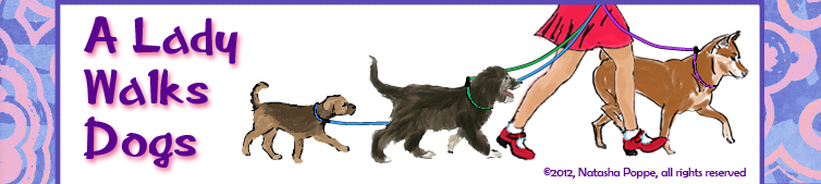 A_Lady_Walks_Dogs_Header