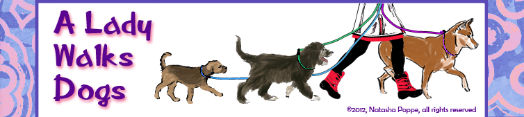 A_Lady_Walks_Dogs_Title_Banner